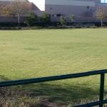 Large open space in Arborwalk Gated Community